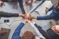 empatia e management